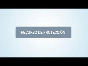 Noticiero Judicial: Cápsula Educativa - ¿Cómo se presenta un recurso de protección?