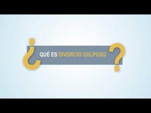 Noticiero Judicial: Cápsula Educativa - ¿Qué es el divorcio culposo?