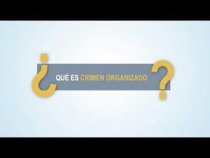 Noticiero Judicial: Cápsula Educativa - ¿Qué es un crimen organizado?