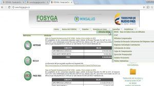 FOSYGA (Fondo de Solidaridad y Garantía)