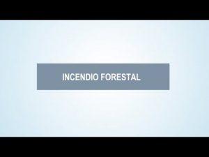Noticiero Judicial: Cápsula educativa - Responsabilidad civil y penal en incendios forestales