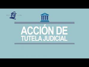 Noticiero Judicial: Cápsula educativa -  Tutela judicial